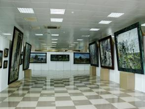 Общий вид выставки Павла Рыженко